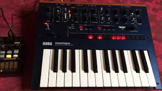 Korg Monologue EBM D.A.F. style - transpose in sync - if slaved to impulse (but not Midi)