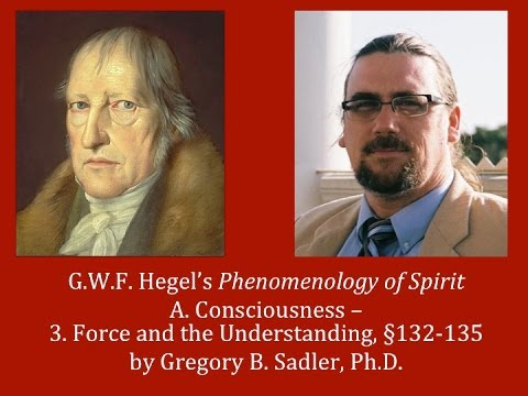 Half Hour Hegel: The Complete Phenomenology of Spirit (Force and the Understanding, sec. 132-135)