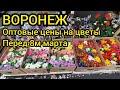 Оптовый рынок Воронеж. Цены на цветы к 8 марта.