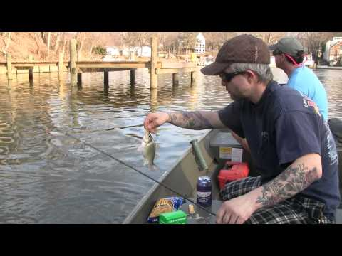 Perch Fishing On The Magothy River. In Pasadena, Maryland