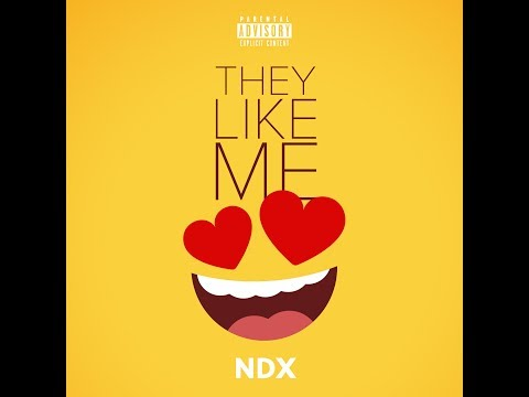 NDX - THEY LIKE ME (audio)