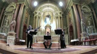 haydn: trio in f (complete piece) performed by the caladrian ensemble