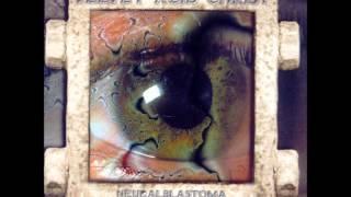 Intussusception - Velvet Acid Christ