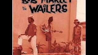 Bob Marley - **~Chances Are~**