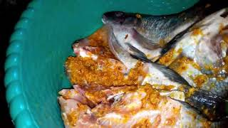 Memasak Ikan Mujair Goreng Emooy!! Gurih dan Mantap!!