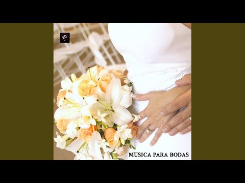 Wagner Marcha Nupcial Mp3 Bridal Chorus Heres The Bride Piano Music Version Wedding Ceremony Music