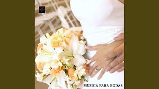 Wagner Marcha Nupcial Mp3 Bridal Chorus Here
