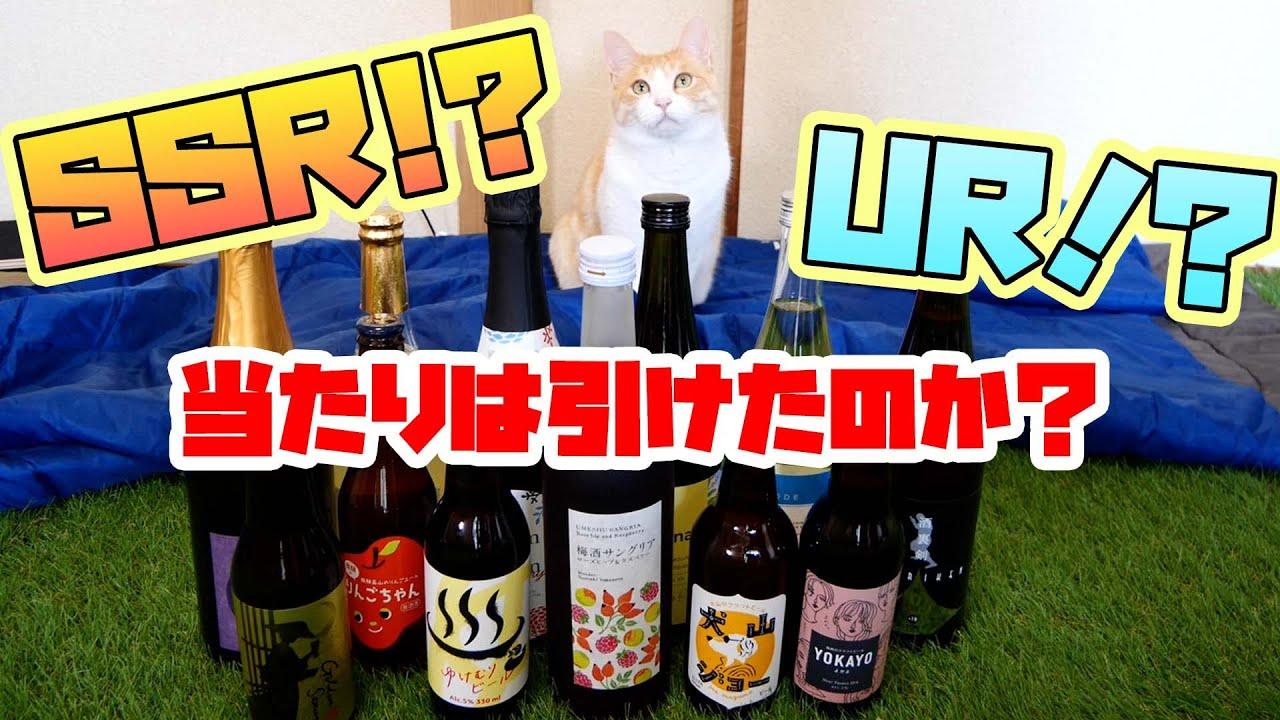 【酒好き歓喜】見たことない酒しか届かない「酒ガチャ」に人も猫も大興奮!