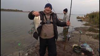 Лещ!!!!! Рыбалка на Дону)))))