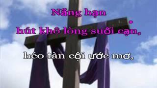 Hát Tiễn Hồn Mẹ - demo