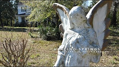 DOES A PLACE OWNED BY GOD HAVE HEALING POWERS? Healing Springs in Blackville SC