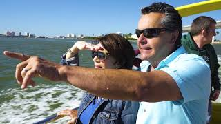 Florida Gulf Coast: Dolphin Spotting & Sunset Celebrations in St. Pete/Clearwater