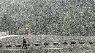 Впервые за полвека в Японии в ноябре выпал снег