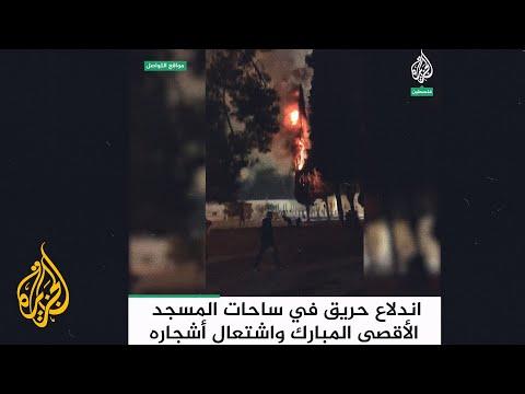 اندلاع حريق في ساحات المسجد الأقصى المبارك واشتعال أشجاره  - 21:59-2021 / 5 / 10