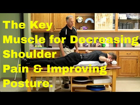 The Key Muscle for Decreasing Shoulder Pain & Improving Posture of the Shoulder.