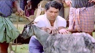 Jagathy & Mammootty Comedy Scenes | Non Stop Comedys | Prem Kumar , Pappu & Sreenivasan Comedys