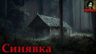 Истории на ночь - Синявка