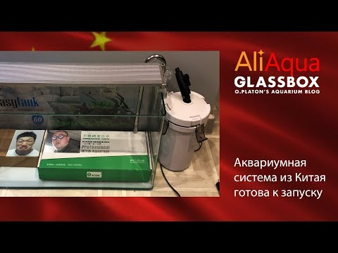 Видео: AliAqua - 3: Аквариумная система из Китая готова к запуску