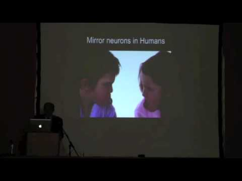 Giacomo rizzolatti mirror neurons from monkey to human for Neurones miroir