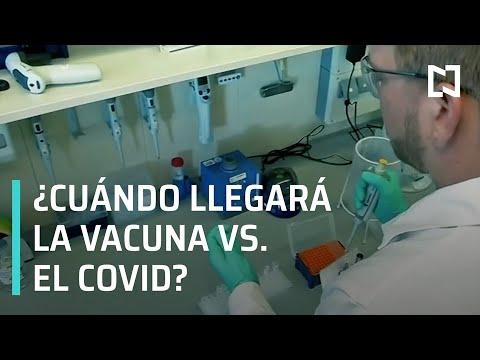 ¿Cuándo llegará la vacuna contra el COVID-19? - Despierta