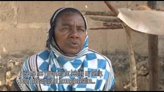Tension Over Rice Prices in Zanzibar