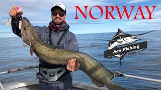 Морская рыбалка в Норвегии на острове Сенья Август 2018г