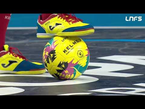 Palma Futsal -