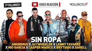 SIN ROPA REMIX ya está en la calle #VideoReaccion se activa #ElPalabreo 🎧