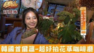 【韓國 首爾】延南洞近弘大必吃!超好拍癒療花草咖啡廳 VER'S GARDEN 食尚玩家