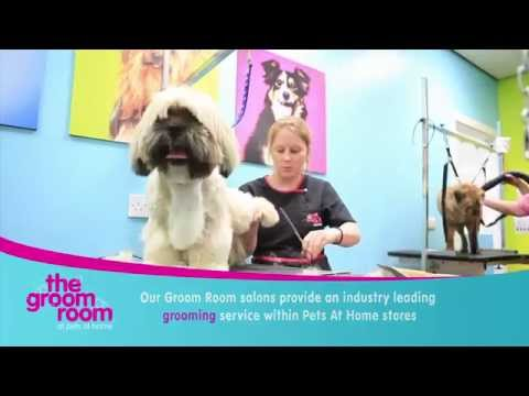 The Groom Room at Pets at Home - YouTube