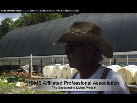 IBMS Affiliated Professional Association: The Sustainable Living Project Tampa Bay Harvest