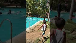 Swimming lessons (try to upload a video )