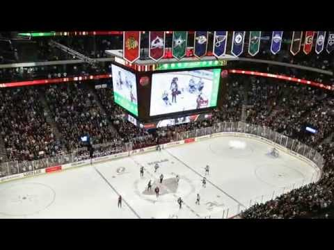 Minnesota Wild - Xcel Energy Project Highlight