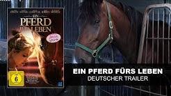 Ein Pferd fürs Leben (Deutscher Trailer)    KSM