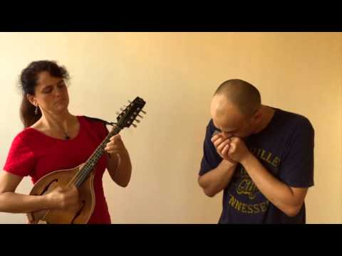 Bluegrass Harmonica - Cluck old Hen - Powerbender harmonica