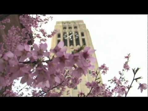 Michigan Alumni: The Spectrum Center Celebrates 40 Years.