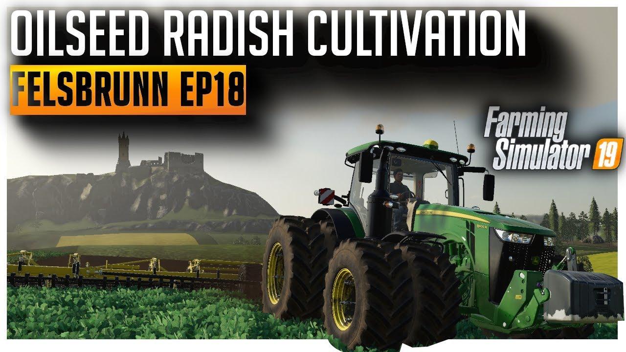 Oilseed Radish Harvest & Cultivation | Let's Play Farming Simulator 2019 Ep18