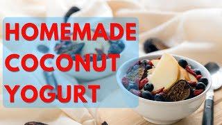 Homemade Coconut Yogurt Recipe (Vegan & Dairy-Free!)