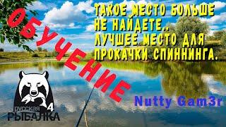 Русская Рыбалка 4 - Место для топ прокачки спиннинга на Ладоге