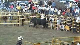 JARIPEO HUECORIO 2008 Parte 4