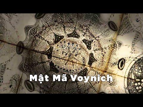 Mật mã Voynich - Phim tài liệu khoa học - Thuyết minh