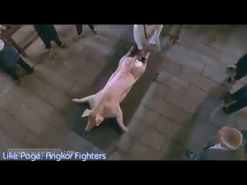 Download Best Scene of Kung Fu Chefs...war