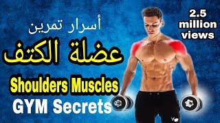 أهم أسرار تدريب و تقوية عضلة الكتف | Shoulders muscles workout Secrets ( English )