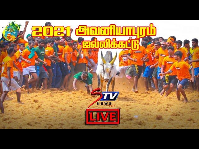 🔴LIVE :  Avaniyapuram jallikattu 2021  jallikattu LIVE     அவனியாபுரம்    Jallikkattu 2021    STV