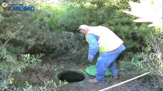 Easement Manhole Maintenance