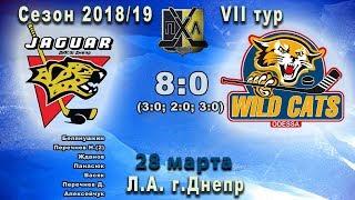 Прямой эфир 8-й игры ПХЛ-2008 «Ягуар»(Днепр) - «Дикие Коты»(Одесса)