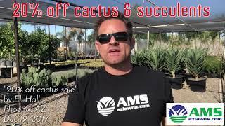 20% OFF Cactus and Succulent Sale in Phoenix
