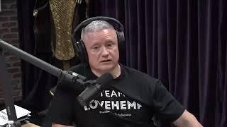 Badr hari 2019: Joe Rogan talks about Badr Hari vs Rico 😱