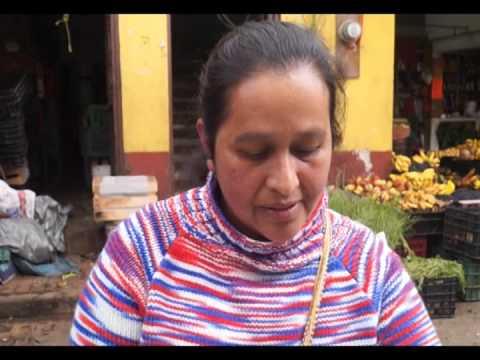 CACTÁSEAS MEXICANAS EN PELIGRO DE EXTINCIÓN.