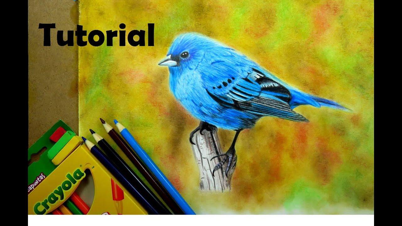 Cómo dibujar un pájaro - Colores marca CRAYOLA - How to draw a blue ...